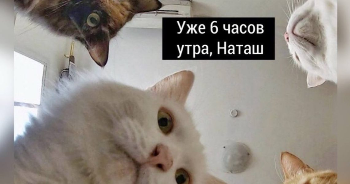 Наташ