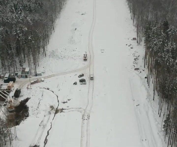 Ульяновский лес